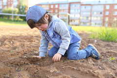 Cute little boy plays with sand outdoors Stock Images
