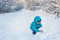 Cute little boy plays with snow in winter forest. A cute little boy plays with snow in winter forest Stock Images