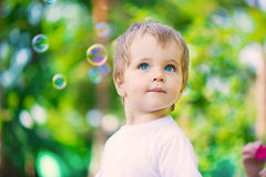Cute little boy portrait Stock Photography