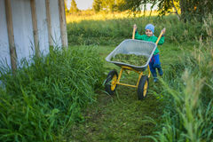 A cute little boy pushes a wheelbarrow. In a country home Royalty Free Stock Image