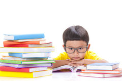 Cute little boy is reading a book Stock Images