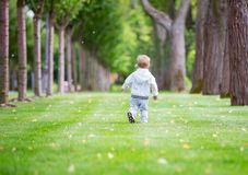 Cute little boy running in park Stock Images