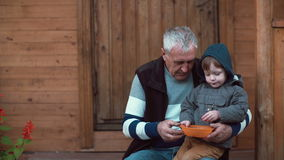 Cute little boy sitting on grandfather s lap and eating berries from the orange bowl. Old man feeding grandson. 4K Stock Photos