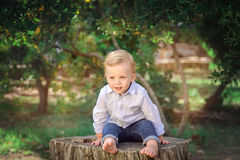 Cute little boy sitting on a stump. Expressing Positivity Concep Stock Photography
