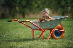 Cute little boy sitting in wheelbarrow Royalty Free Stock Images