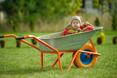 Cute little boy sitting in wheelbarrow Royalty Free Stock Image
