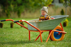 Cute little boy sitting in wheelbarrow Stock Photo