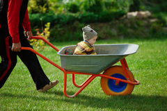 Cute little boy sitting in wheelbarrow Royalty Free Stock Photography
