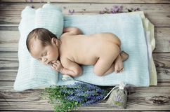 Cute little boy sleeping on the blanket Stock Images