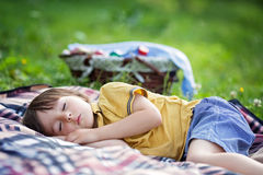 Cute little boy, sleeping on a picnic blanket, outdoors in a sum. Mer sunny afternoon Stock Photos