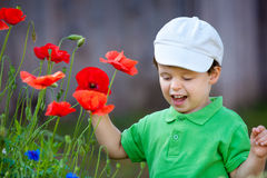 Cute little boy smells a wild flower Stock Photos