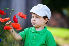 Cute little boy smells a wild flower Stock Image