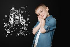 Cute little boy smiling while dreaming about a lovely winter evening. Pleasant thoughts. Cheerful pretty kind boy smiling and looking pleased while standing with stock photos