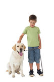 Cute little boy standing with his labrador dog Stock Photos