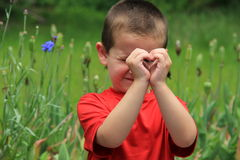 Cute little boy standing in meadow,shaping heart in front of face. Royalty Free Stock Images