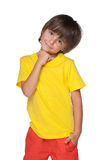Cute little boy stands Stock Images
