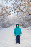 Cute little boy stands in winter park Stock Photos