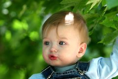 Cute little boy Summer action Royalty Free Stock Photography