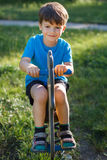 Cute little boy swing on horse Stock Photography