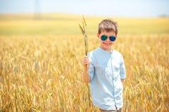Cute little boy walking happily in wheat field Stock Image