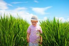 Cute little boy walking through the rice field Stock Photo