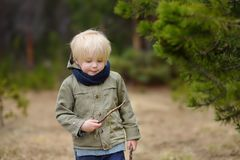 Cute little boy walks in Swiss national Park on spring. Hiking with little kids. Cute little boy walks in Swiss national Park on spring. Active family time on royalty free stock photos