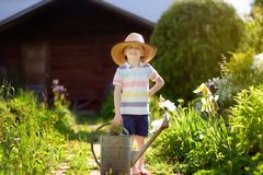 Cute little boy watering plants in the garden at summer sunny day. Mommy little helper royalty free stock images