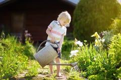 Cute little boy watering plants in the garden at summer sunny day. Mommy little helper stock photo