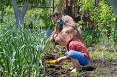 Cute little boy weeding the vegetable garden Royalty Free Stock Images