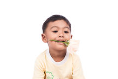 Cute little boy with white rose Royalty Free Stock Photography
