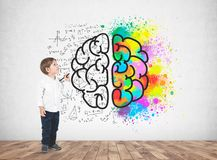 Cute little boy with a marker, brain royalty free stock photo