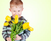 Cute little boy with yellow tulips Stock Photo