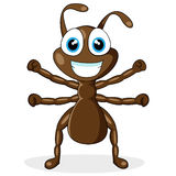 Cute little brown ant Stock Images