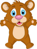 Cute little brown bear cartoon expression Stock Photography