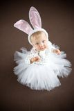 Cute little bunny. On brown Stock Images