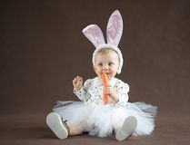 Cute little bunny. With carrot Royalty Free Stock Photography