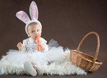 Cute little bunny with carrot. And basket Royalty Free Stock Photography