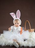 Cute little bunny with carrot Royalty Free Stock Images