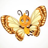 Cute little Butterfly with yellow and brown ornament wings Royalty Free Stock Image