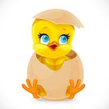 Cute little cartoon chick hatched from an egg Stock Images