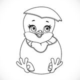 Cute little cartoon chick hatched from an egg outlined Royalty Free Stock Images