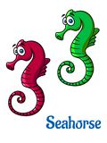Cute little cartoon seahorses Stock Photo