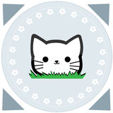 Cute little cat Stock Image