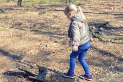 Cute little caucasian blond girl walking on wooden log in forest. Adorable child having fun during walk in park in bright sunny. Day stock photos