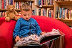 Boy browsing through book in a bookstore. Cute little Caucasian boy sitting in a chair with his favorite soft teddy bear toy and browsing through book in a small stock images