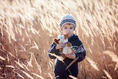 Cute little caucasian child, boy, holding fluffy toy, hugging it Royalty Free Stock Photo