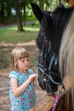 Cute little girl and a horse. Cute little Caucasian girl stroking the head of a black horse Stock Photography