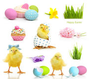 Cute little chicken coming out of the Easter egg Royalty Free Stock Images