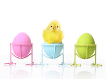 Cute little chicken and Easter eggs Royalty Free Stock Images