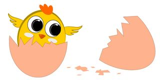 New born chick. Cute little chicken new born together stock illustration